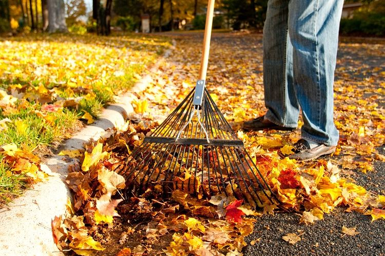 Fall-leaves-raking-mulching-sweeping-composting_CleanWaterMN-19-sm